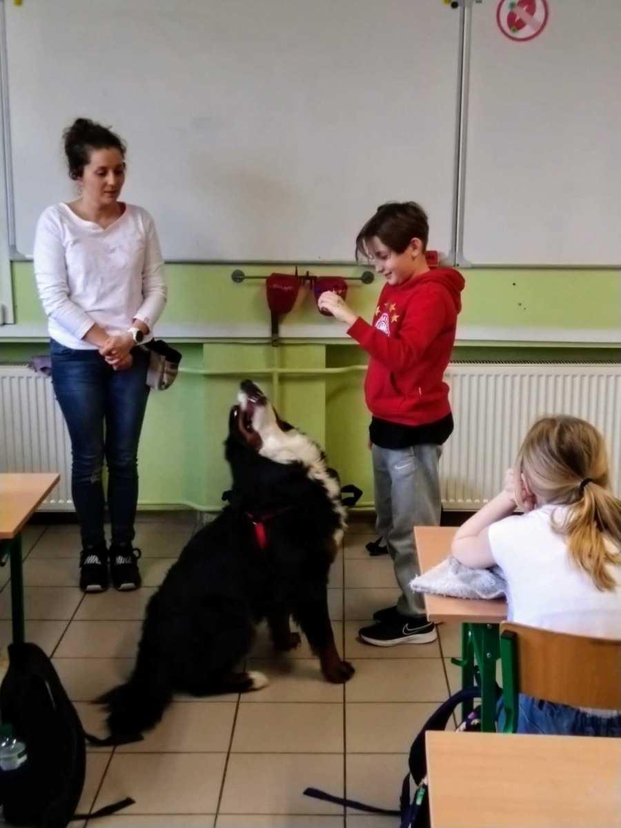 dog-1_